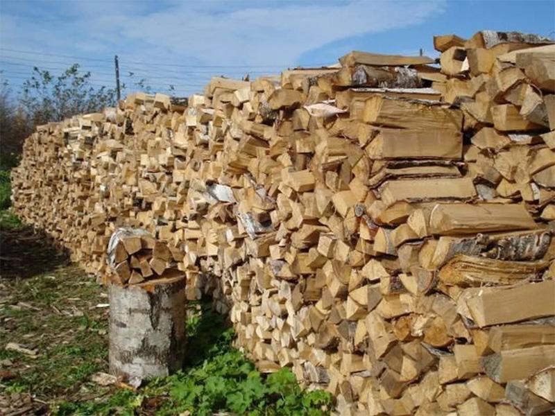 Изображение - Продажа дров как бизнес zagotovka-i-prodazha-drov-01