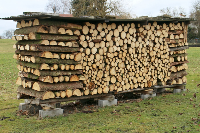 Изображение - Продажа дров как бизнес zagotovka-i-prodazha-drov-03