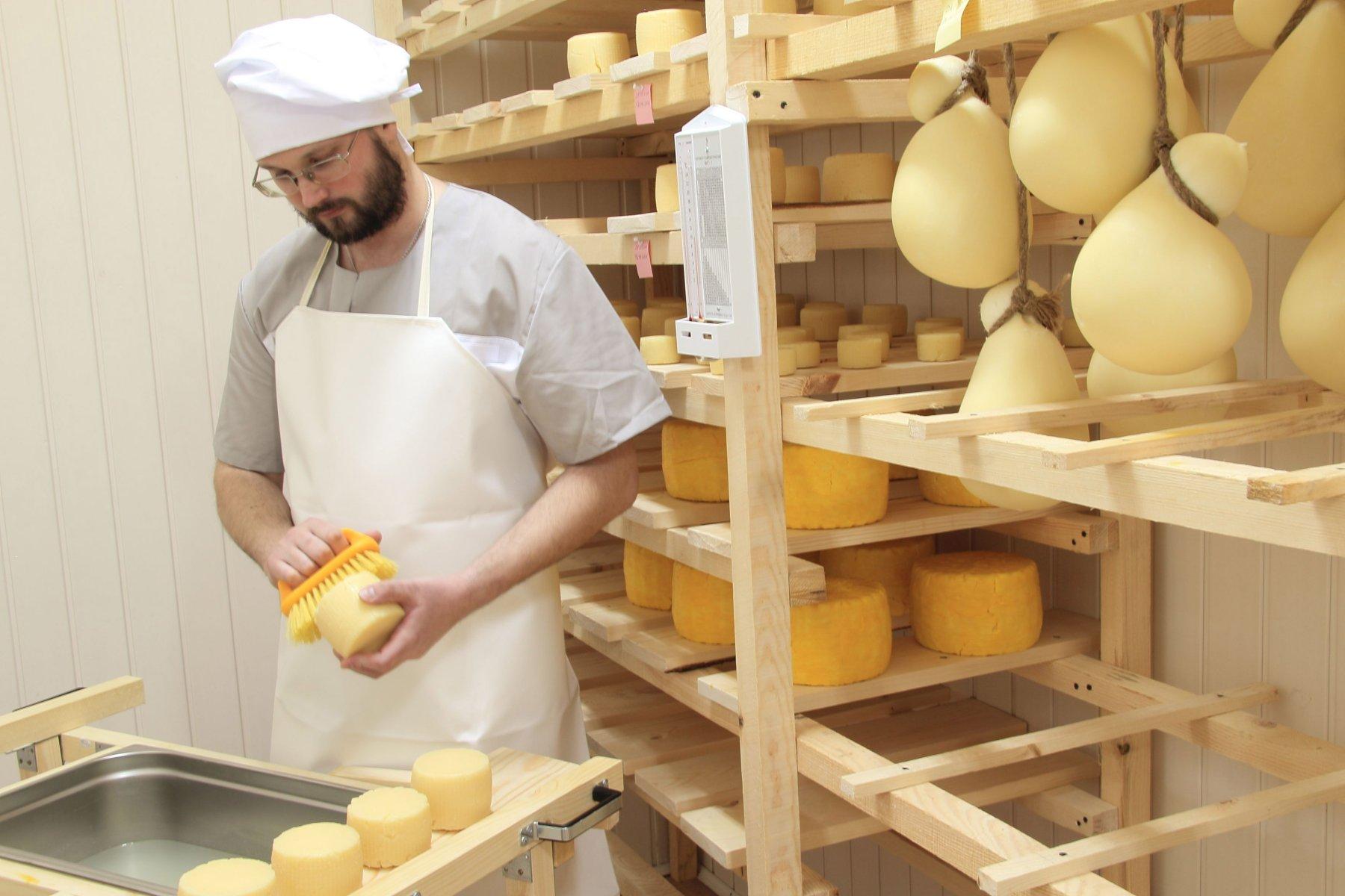 Производство домашних сыров